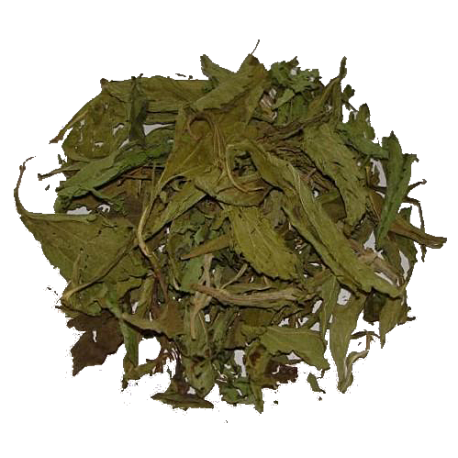 Stevia Leaves 1 Kg 2.2 lb Direct from farm- Pure and Freshly dried bulk pack