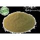 Tulsi Powder 1 Kg bulk pack Organic